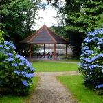 Glengarriff Bamboo Park