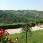 Foto de Agriturismo Il Ciliegio