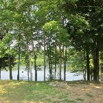 View of the lake from the hill end of the campground