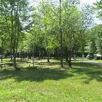 Center of the hill section of the campground