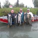 sockeye on the kenai