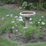 Birdbath in the gardens