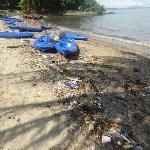 Celestial Resort Pulau Ubin Foto