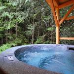 View from Bear Cabin hot tub