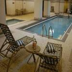Indoor Swimming pool with Hot and Cold Plunge Pool
