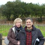 Evanston Cellars -  Wine Trail Tours