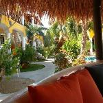 View of the grounds from the Palapa