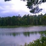 View of Lake Itasca behind cabin