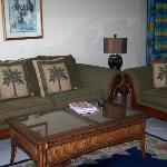 Living area/upscale furnishings