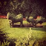 Horse topiaries Peat and Moss greet you at the Tea Garden