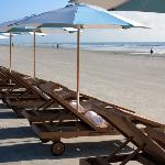 Pool Beach Beach Teak