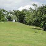 Negril Hills Golf Club Foto