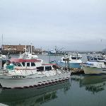 Charter boats for fishing tours at our marina