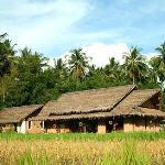 Restaurant in the rice fields