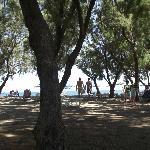 Stafilia Beach Foto