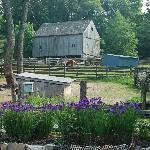 Stamford Museum & Nature Center -- Cheshire Barn