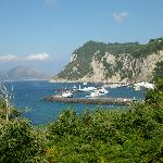 Capri harbour