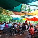 Beautiful outdoor patio by the Yampa River, under the shade of a gnarly old tree!