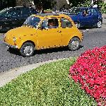 Roundabout in Sant Agnello