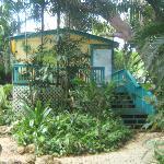 Tropic Cabanas