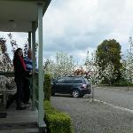 Spring into Lake Hamilton Motor Village