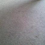 Stained Carpet Area