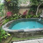 Our own PRIVATE pool in our villa. Not big enough for laps but big enough to cool off.