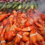A look inside the lobster cooker.