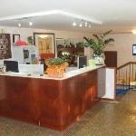 Foto di Hotel Viking