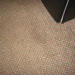 Stained carpet in front of refrigerator