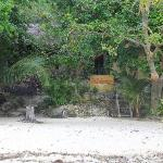 Beach/ Entrance to the property