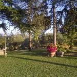 Villa Pina Foto