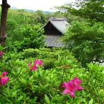Tenryuji gardens