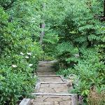 path around lodge leading to Lake