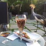 la grue mâle aime le champagne!