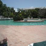 rear of pool