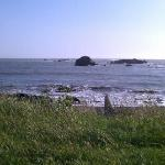 Walking trail in rear of Oceanlodge