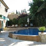 Garden/Pool area