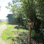 Yurt 1 at Camp Morton Provincial Park