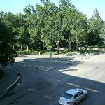 view of the park across the street.