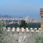 Views of Florence from the olive grove