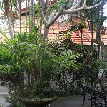 Family villa set in amongst the bush