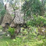 Native Style Building on the grounds