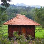 The wooden cottage in Jungle Retreat Wayanad