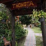 Thongta