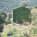 Photo de la maison prise du portail d'entrée