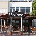 Vinifera Winehouse & Café, Turgutreis