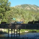 Horses Crossing The Bridge