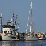 Port McNeill/Marina und Hafen
