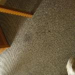 Dark stains on carpet, this is just a sample.